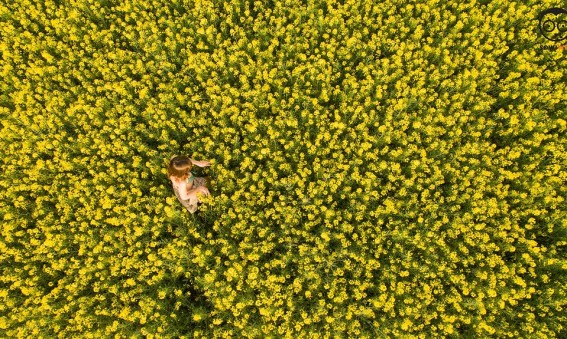 Dron dla fotografa