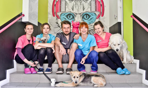Najlepsza lecznica weterynaryjna na Dolnym Śląsku